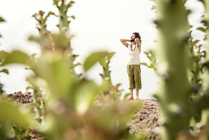 Man standing on rock behind cactiの写真素材 [FYI04335457]