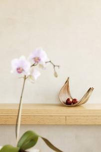 Fruit bowl with apple on shelf and orchidの写真素材 [FYI04335496]