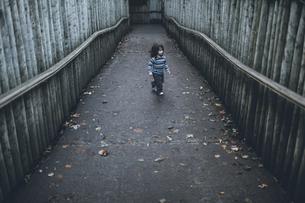 Boy walking on path between high wooden polesの写真素材 [FYI04335528]