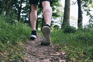 Shoes of jogger running on forest trackの写真素材 [FYI04335587]