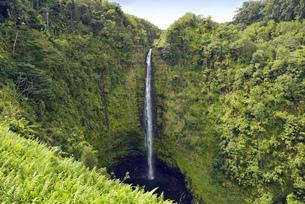 USA, Hawaii, Big Island, Honomu, Akaka Fallsの写真素材 [FYI04335640]