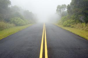USA, Hawaii, Waimea, street in fog, Kokee State Parkの写真素材 [FYI04335649]