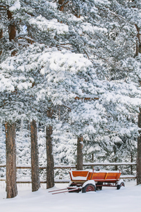 Bulgaria, red wooden trailer standing under snow-covered pinの写真素材 [FYI04335735]