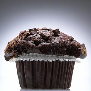 Brownieの写真素材 [FYI04335988]