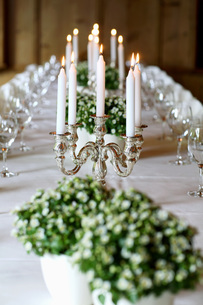 Decorated dining tableの写真素材 [FYI04336001]