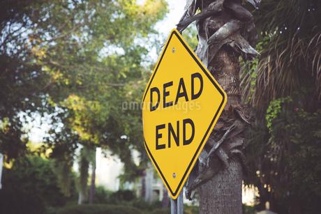 USA, Florida, Captiva Island, dead end signの写真素材 [FYI04336072]