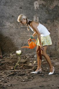 Woman watering one flowerの写真素材 [FYI04336133]