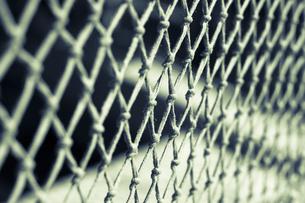 Part of net with knotsの写真素材 [FYI04336173]