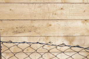 Mesh wire fence and woodの写真素材 [FYI04336180]