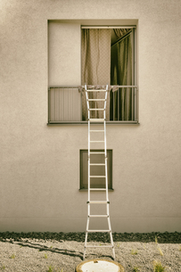 Ladder on open windowの写真素材 [FYI04336183]