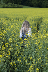 Germany, Bavaria, Starnberg, girl in a rape fieldの写真素材 [FYI04336237]