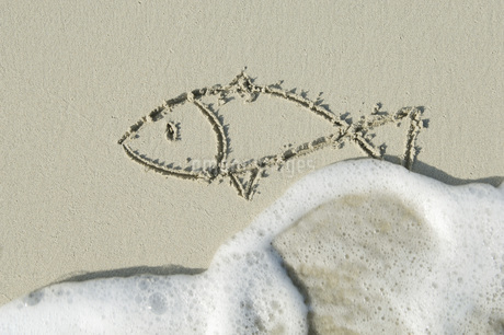 Fish drawn in sand on beach by sea.の写真素材 [FYI04336260]