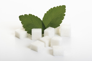 Sugar lumps and stevia leaves on white backgroundの写真素材 [FYI04336277]