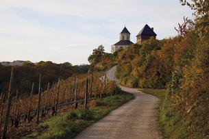 Europe, Germany, Rhineland-Palatinate, View of oberburg mathの写真素材 [FYI04336285]