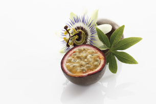 Passion fruit with blossom on white backgroundの写真素材 [FYI04336289]