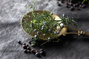 Brass spoon with seeds of juniper on textile, close upの写真素材 [FYI04336423]