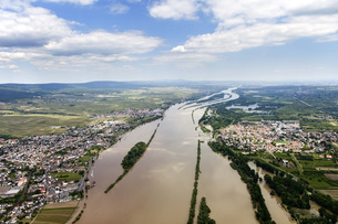 Germany, High water of River Rhine at Ingelheim and Oestrichの写真素材 [FYI04336427]