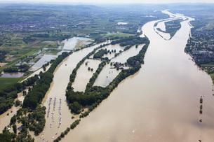 Germany, Hesse, Eltville, Flooding of River Rhine Island Koeの写真素材 [FYI04336431]