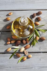 Argan nuts from Argan tree, Argania spinosa, leaves and Argaの写真素材 [FYI04336450]