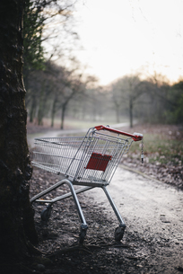 Germany, empty shopping cart parked at tree in city park onの写真素材 [FYI04336719]
