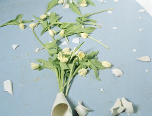 Broken vase and flowers on floorの写真素材 [FYI04336772]