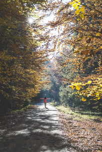 Back view of woman enjoying sunlight in autumnal forestの写真素材 [FYI04336857]
