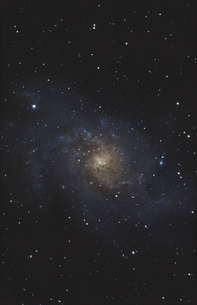 Astrophotography of M33 spiral galaxy, captured with vixen Vの写真素材 [FYI04336909]