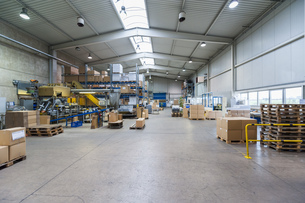 Empty industrial hall with stored packages, paletts and packの写真素材 [FYI04336979]