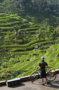 Indonesia, Bali, Tegalalang, Man staning with bicycle lookinの写真素材 [FYI04337554]
