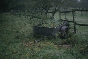 Old trailer standing on a pastureの写真素材 [FYI04337798]