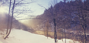 Wupper wetland near Muengsten in winter morning, panoramaの写真素材 [FYI04337835]