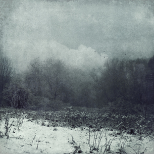 Germany, Wuppertal, winter landscape, textured photographyの写真素材 [FYI04337886]