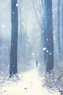 Germany, Wuppertal, man in winter forest, textured photograpの写真素材 [FYI04337891]
