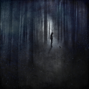 Germany, Birgelen, man with raven in forest, surreal manipulの写真素材 [FYI04337892]