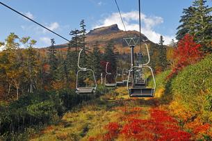 9月 紅葉の黒岳 -大雪山の秋-の写真素材 [FYI04338109]