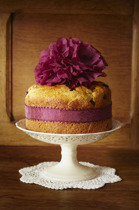 Panettone cake with cranberries on cake standの写真素材 [FYI04338195]