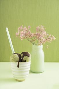 Green tea icecream  with chocolate sauce and Gypsophila flowの写真素材 [FYI04338222]