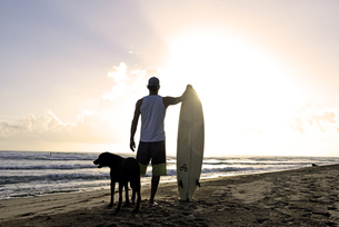 Back view of  man with surfboard and dog watching sunset onの写真素材 [FYI04338239]
