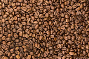 Coffee beansの写真素材 [FYI04338340]