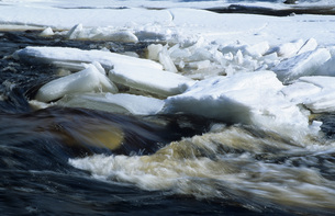 Germany, Black Forest, ice floe flowing with waterの写真素材 [FYI04338365]