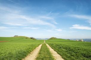 Germany, Baden Wuerttemberg, Hegau landscape, Field path toの写真素材 [FYI04338439]