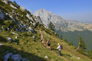 Europe, Montenegro, Group of hikers hiking on Komovi Mountaiの写真素材 [FYI04338547]