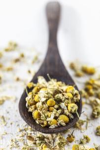 Dried chamomile on spoon, studio shotの写真素材 [FYI04338562]