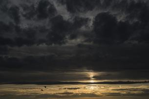 Germany, Berlin, View of sunsetの写真素材 [FYI04338611]