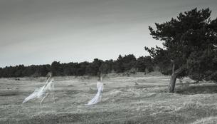 Germany, Bavaria, Froettmaning Heath, Young women on a meadoの写真素材 [FYI04338649]