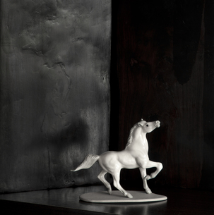 Horse figure of white porcelain in front of black backgroundの写真素材 [FYI04338657]