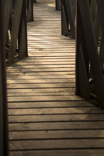 Germany, wooden boardwalk, partial viewの写真素材 [FYI04338662]
