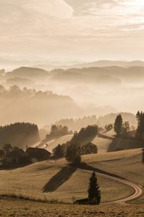 Austria, Muhlviertel, Autumnal landscape at sunriseの写真素材 [FYI04338722]