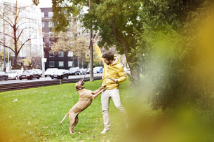 Young man playing with his dog on grass vergeの写真素材 [FYI04338771]