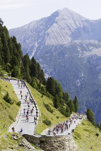 Austria, Stilfser Joch, cycle raceの写真素材 [FYI04338862]